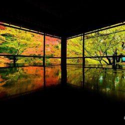 京都紅葉の穴場スポット レンタカーでレッツゴー
